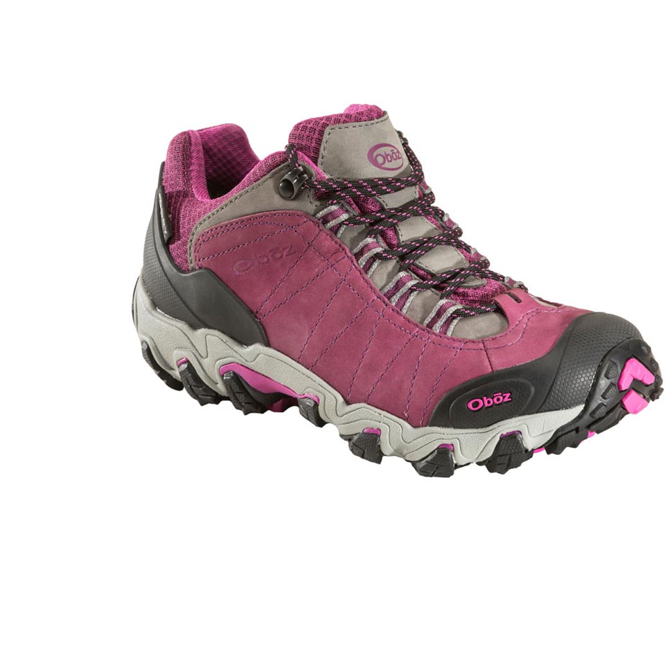 Women's Bridger Low BDry