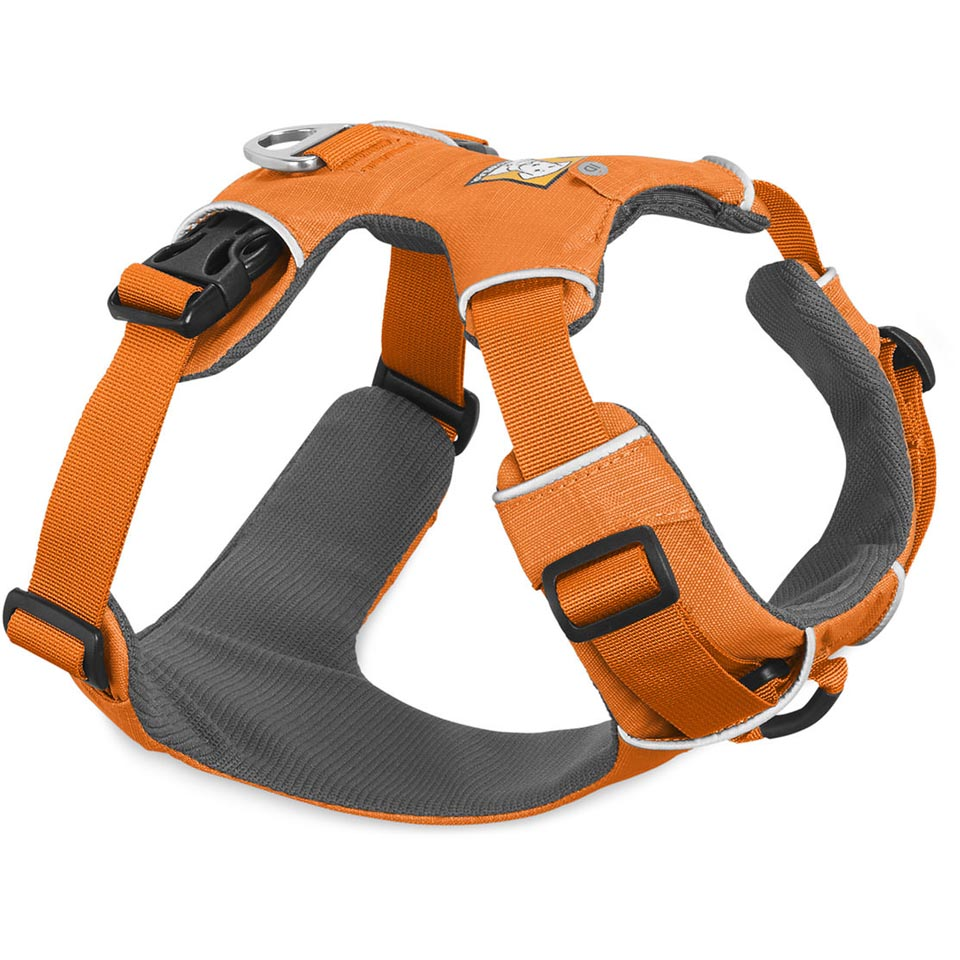 Front Range Harness (2017)