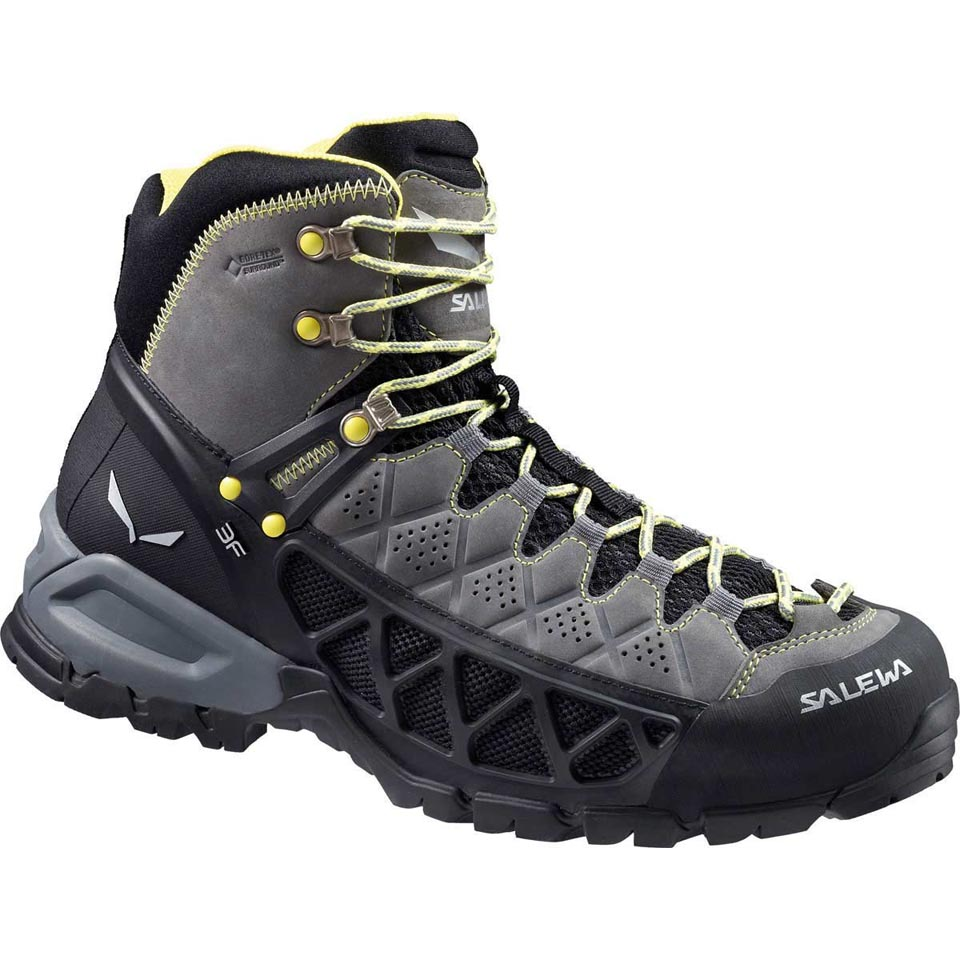 Men's Alp Flow Mid GTX